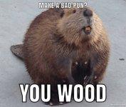 Wood Pun.jpg