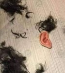 Quarantine Haircut.jpg