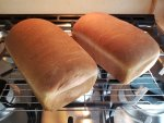 New ovwn first loaves.jpg